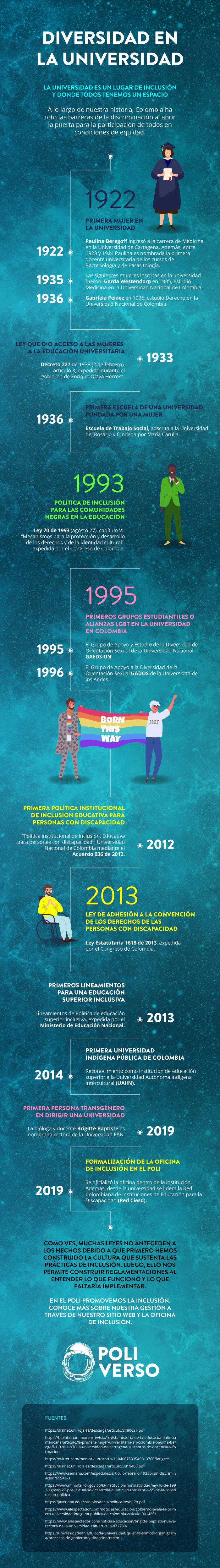 Infografía Diversidad en la Universidad - tema de inclusión