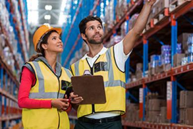 Seguridad y Salud Laboral Virtual
